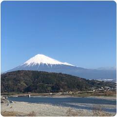 わんこ同好会/富士山/三島スカイウォーク/三島大社/フォロー大歓迎 今年8月にLIMIAに出会い、みなさんに…