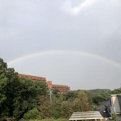 虹 虹🌈だぁ〜❣️ 移動中🚗止めてもらってパ…