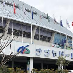フォロー大歓迎/名古屋シティマラソン/名古屋ウィメンズマラソン 楽しみにしていた 名古屋のマラソンが一般…
