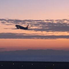 クリエーターズマーケット/夕陽/飛行機/スカイデッキ/セントレア/おでかけ/... ✈️セントレア島内にある AICHI S…