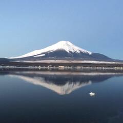 富士山/令和の一枚/フォロー大歓迎/LIMIAペット同好会/わんこ同好会/至福のひととき/... 逆さ富士!絶景! 私史上 最高の 一枚!