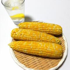 夏のごちそう/大好きな夏/LIMIAな暮らし 夏のはじまり。茹でたてのトウモロコシを …