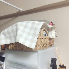 ミシン/カバー/ハンドメイド/DIY/キッチン/インテリア/... 今日のDIY おやつかごのカバーを作りま…