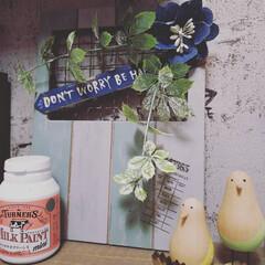 ターナー ミルクペイント ミニ アッシュグレー / ターナー | ターナー(その他塗料、塗装剤)を使ったクチコミ「昨日の晩に急に思い立って💦塗り塗りしまし…」(2枚目)