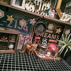 モザイクタイルシール/Dream Sticker/3COINS/ナチュラルキッチン/カフェ風インテリア/男前インテリア/... おはようございます🙌 玄関のクリスマス飾…