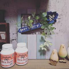 ミルクペイント 4ペンキ DIY 塗装 塗る ペイント 家具 大工 色付け 50mL ターナー | ターナー(ペンキ、塗料)を使ったクチコミ「昨日の晩に急に思い立って💦塗り塗りしまし…」