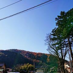 整理/自然/山/archive/Photo/写真/... 秋くらいの1枚 まだ紅葉の所とそうじゃな…