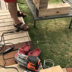 初めてのDIY/セリアリメイク/ガーデニングdiy/庭づくり/トレイDIY/暮らし 廃材をいただいたので、旦那さんが作って私…(2枚目)