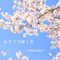 桜/コンテスト応募/コンテスト参加/風景/春の一枚 2019.4.3  息子がこの春、無事高…