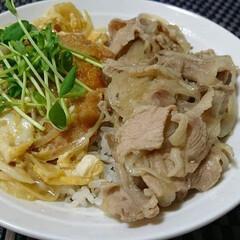 half&half丼/豚丼/カツ丼 カツ丼と豚丼のhalf&half丼