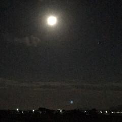 月/おでかけ/風景/暮らし/雨季ウキフォト投稿キャンペーン 昨日の夜の月。 すごく光ってました(´∀…