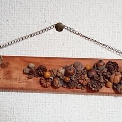 木の実アレンジ/ドライフラワー/木の実リース/100均/DIY/雑貨/... こんにちは🙇 今日は雨が降ったり止んだり…(4枚目)