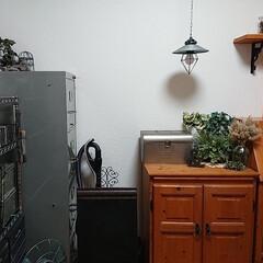 お気に入り空間/境界/ダイソー/セリア/100均/DIY/... おはようございます🙇 我が家のナチュラル…