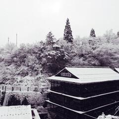 観光地/観光/温泉/温泉宿/温泉街/老舗旅館/... 鎌先温泉