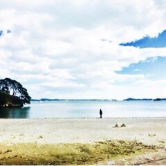 冬の一枚/冬の思い出/思い出/海辺/海/プチ旅行/... 景色よし、ご飯も美味しい松島!
