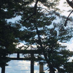景色/神社/雲/空/光/滝/... お気に入りの写真いろいろ(7枚目)
