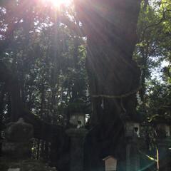 景色/神社/雲/空/光/滝/... お気に入りの写真いろいろ(2枚目)
