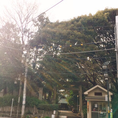 景色/神社/雲/空/光/滝/... お気に入りの写真いろいろ(3枚目)