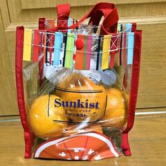 ビニールバッグ/ミッキーマウス/サンキストオレンジ スーパーでサンキストオレンジ(7個入)を…(2枚目)
