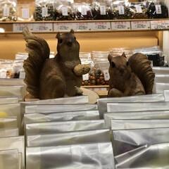 栗モンブラン豆/葡萄豆/まめや 実家に荷物を📦送るので まめやの 秋バー…(3枚目)