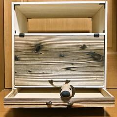 棚/素麺の箱 半田そうめんの木箱を使って 棚を作りまし…(2枚目)