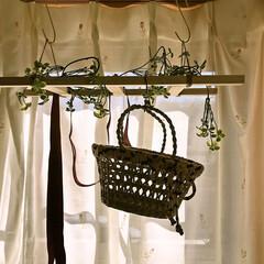 出窓/カゴバック/ラダー/セリア 寝室の出窓に飾った   ラダー6号です。…