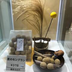 栗モンブラン豆/葡萄豆/まめや 実家に荷物を📦送るので まめやの 秋バー…(5枚目)