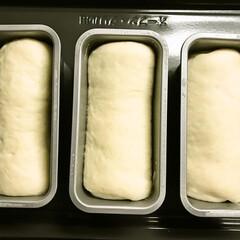 手作りパン/ミニ食パン/粒ジャム/イチゴジャム/ブルーベリージャム/渦巻ミニ食パン 渦巻ジャムのミニ食パン3本焼きました。 …