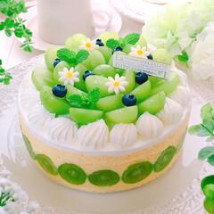 おうちカフェ/フレジエ/フレジェ/フレジェ風/フルティエ/シャインマスカットのケーキ/... シャインマスカットのフレジェ♪