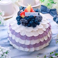 おうちカフェ/ブルーベリーケーキ/ブルーベリー/誕生日プレゼント/誕生日ケーキ/バースデーケーキ/... ブルーベリーのドームケーキ♪