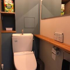 トイレ/DIY/住まい/リフォーム/イケア/塗装/... トイレをリフォームしました。  天井と壁…