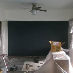 壁/天井/ペンキ/塗装  お金がなかったので、壁も天井もペンキで…