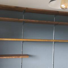 ガチャ棚/ロイヤル/壁面収納/DIY  上から3段目だけは頂いた板、あとはホー…
