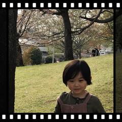 パワー/孫/公園 公園へ⛲️ 鬼ごっこ👹かくれんぼと ばあ…(2枚目)