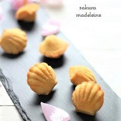 手作りお菓子/手作りスイーツ/手作りおやつ/マドレーヌ/桜スイーツ/桜/... 桜餡を生地に混ぜたマドレーヌ。 薄力粉で…
