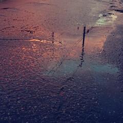 水たまり/雨はもういいかな/夕焼け/梅雨 ひと月程前の写真ですが 毎日梅雨空で 夕…(1枚目)