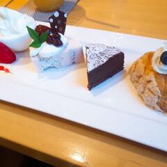 ありがとう/楽しい時間/ケーキ好き/久しぶりのカフェ/お気に入りカフェ/カフェ時間/...  オススメ🍰セット💕🎶