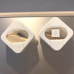 Seria/調味料ケース/リピート買い/調味料入れ/セリア/100均/... Seriaの調味料ケース。 最初はコンロ…
