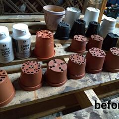 アンティーク エイジング 塗料 P-Effector ザラザラベース(ペンキ、塗料)を使ったクチコミ「草花や多肉植物を購入した際についてたプラ…」