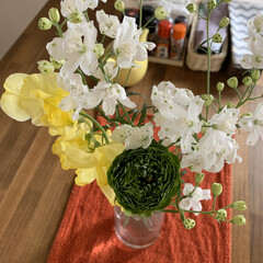 ラナンキュラス/お花のある暮らし/グリーンのある暮らし/DIY/キッチン/雑貨/... いつものお花屋さんで素敵な緑のラナンキュ…