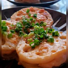 料理が好き/レンコン料理/料理/LIMIAごはんクラブ レンコンシリーズ 1つ目は辛子れんこんの…