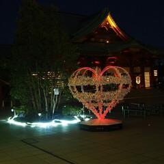 イルミネーション/スイーツ/お出かけ/フォロー大歓迎 神田明神の敷地内にあるMASUMASU …(2枚目)