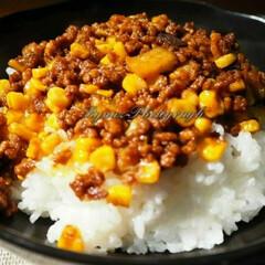 手料理/おうちごはん/フォロー大歓迎 コーンと茄子のキーマカレーを作ってみました(1枚目)