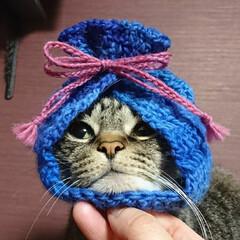 ハンドメイド/バレンタイン2020/まめ/かぎ針編み/毛糸/Instagram/... 『きんちゃく帽子』作りました🌸  模倣・…(1枚目)