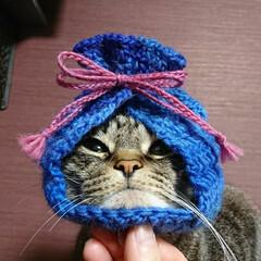 ハンドメイド/バレンタイン2020/まめ/かぎ針編み/毛糸/Instagram/... 『きんちゃく帽子』作りました🌸  模倣・…(2枚目)