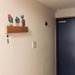 玄関/ウォールステッカー/長押/壁に付けられる家具/無印良品/玄関あるある 無印の壁に付けられる家具・長押+ウォール…