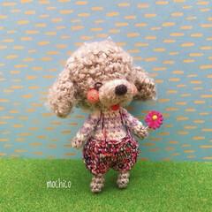 マスコット/カギ針編み/手作り/編みぐるみ/ハンドメイド/あみぐるみ/... もこもこの糸で編んだ ワンコのあみぐるみ…
