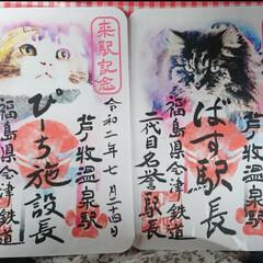 「猫さん好きの、友達が、癒されて来たそうで…」(1枚目)
