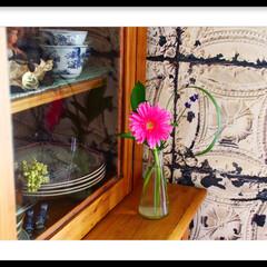 サンドブラスト/アンティーク/セルフリフォーム/壁紙/ティンタイル/お花の定期便/... 郵便ポストに届くお花の定期便💐