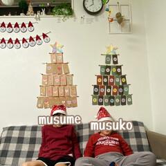 クリスマスツリー/子どものいる暮らし/子どもと暮らす/アドベントカレンダー/クリスマス2019/リミアの冬暮らし/... 子ども達とアドベントカレンダーをつくりま…